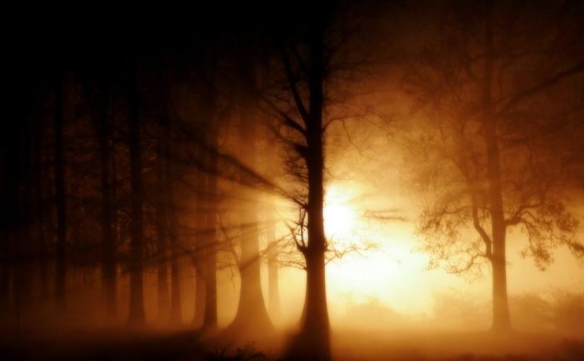 arbitrary light